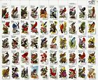 US NATURE WILDLIFE 1953 2002 STATE BIRDS  FLOWERS 50 FVF 20c STAMP SHEET