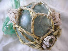 Authentic Beach Combed Japanese Glass Fishing Float With Attached Barnacles