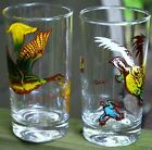 QUAIL 1950s Drinking Glasses Tumblers Hunting