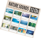 NATURE SOUNDS Set: Ocean Waves, Forest, Distant Thunder, of with Music, Wilderne