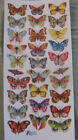 VIOLETTE STICKER PANEL TROPICAL BUTTERFLIES SMALL ALL DIFFERENT COLORFUL