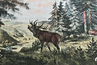 Home Decor Wall Hanging Tapestry, WILD FIFE SCENE 24