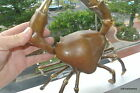 aged MUD CRAB solid brass antique colour decor statue claw hand made 10