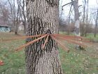 Antique Primitive 8 Arm Iron and Wood Wall Mount Clothes Drying Rack