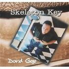 SKELETON KEY - DAVID GOGO (CD, 2005) 💿 [BRAND NEW]