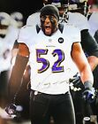 Ray Lewis Rookie Cards and Autograph Memorabilia Guide 37