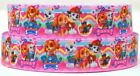 Grosgrain Ribbon 78 1.5 Paw Patrol Friends Printed Combine Shipping