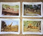 Set Of 4 Vintage Glass Dishes Featuring African Wildlife. From South Africa.