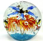 Beautiful Crystal Glass Art Sphere Dolphins Under Sea Fish Starburst Paperweight