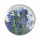 Forget Me Not Blue Flower Round Resin Paperweight