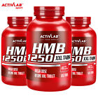 HMB SUPPLEMENTS 120 Tablets Dry Muscle Builder - Increased Strength - Fat Burner