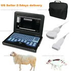 Cms600p2 Vet Portable Veterinary Ultrasound Scanner Machine With Probeus Seller