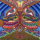APOTHEOSIS Of DUALTREE Chris Dyer BLOTTER ART perforated paper psychedelic art