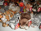 TY BEANIE BABIES SILVER POUNCE SNEAKY AMBER KALEIDOSCOPE PRANCE INDIA TRACKS CAT