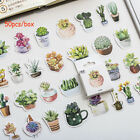 Stationary Succulent Plants Sticker Paper Sticker Stickers Diary Label