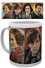 GB Eye Harry Potter - Fantastic Beasts Zeichen Mug