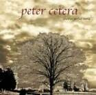 Another Perfect World by Cetera, Peter