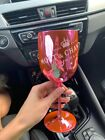 5X MOET CHANDON PINK ROSE CHAMPAGNE ACRYLIC PLASTIC GOBLET FLUTE PARTY GLASS