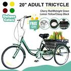 20 Adult Trike Tricycle 3 Wheel Bike w Basket for Shopping Double Wall Box