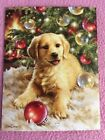 END OF YEAR SALE Leanin Tree Christmas Note Card Set 12 May Lots Of