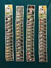 2019 Topps MLB Sticker Collection Baseball Cards 9