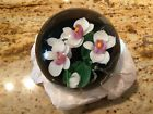 LUNDBERG STUDIOS DANIEL SALAZAR WHITE MOTH ORCHID PAPERWEIGHT BEAUTIFUL