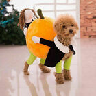 Funny Carrying Pumpkin Dog Cat Pet Clothes Costume Fancy Puppy Apparel Jacket