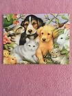 END OF YEAR SALE Leanin Tree Blank Note Card Animals