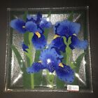 Stunning New PEGGY KARR Fused Glass BLUE IRIS 10 Square Plate Artist Signed NWT