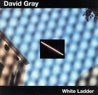 White Ladder by David Gray (CD, Mar-2000, ATO (USA)) CD Disc Only C4