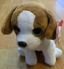 Ty Beanie Baby Banjo with tags birthday October 25 2011