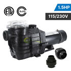15HP 115 230v IN GROUND Swimming POOL PUMP MOTOR w Strainer 2 thread NPT