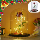 Enchanted Forever Red Rose Flower In Glass LED Light Dome Valentines Day Gifts