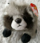 TY SNOOPS the RACOON BEANIE BABY 2004