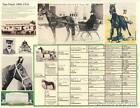 Dan Patch Pacer Harness Racing Picture Pedigree  chart