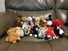 Ty Beanie Babies Lot Of 15 Peace, Curly, Cubbie, Sammy And More Lot 7