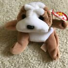 TY Beanie Baby Wrinkles the Bull Dog May 1, 1996 MWMT
