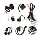 Electrics CDI Coil Wiring Harness Wire Loom for 150 250cc Bike Scooter Buggy