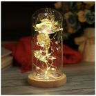 Galaxy Rose Flower Gift Beauty And The Beast Rose In Glass With Wood Base