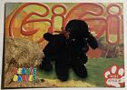 Ty Beanie Babies Gigi Poodle Retired Collectors card 4191 91 2nd edition III