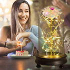 Enchanted Gold Foil Galaxy Rose flower in Dome Glass LED Light Valentines Day