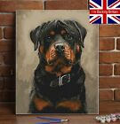Personalised Paint By Numbers UK Custom Kit Oil Canvas Portrait Pets Adults