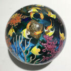 Cathy Richardson glass paperweight aquatic scene with angelfish coral and ray