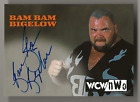 Legend and Tragedy: Ultimate Topps WCW Autograph Cards Guide 33