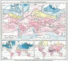 WORLD: Climate commercial products; Isotherms Ocean Currents Jan July, 1907 map