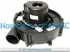ICP Heil Tempstar Comfort Maker Furnace Exhaust Inducer Motor 1013188 HQ1013188