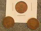 Vintage1888 & 1906 Indian Head Cent Plus1951D lincoln Cent