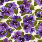 RJR Fabrics Debbie Beaves Lovely 1444 02 Large Purple Pansy Cream By the Yard