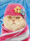 Cat Wears Bathing Cap Funny Just For Fun Card Greeting Card by Avanti Press