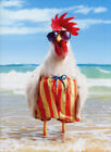 Rooster Wears Swimsuit Funny Birthday Card Greeting Card by Avanti Press